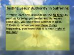 testing jesus authority in suffering135