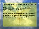 testing jesus authority in suffering138