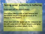 testing jesus authority in suffering14