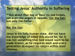 testing jesus authority in suffering162