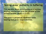 testing jesus authority in suffering167