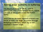 testing jesus authority in suffering19