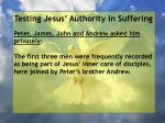 testing jesus authority in suffering20