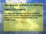 testing jesus authority in suffering45