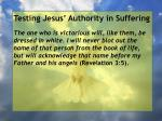 testing jesus authority in suffering64