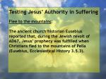 testing jesus authority in suffering80