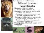 different types of heterotrophs