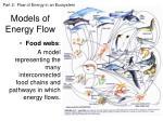 models of energy flow2