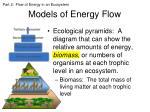 models of energy flow3