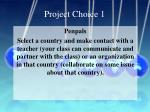 project choice 1