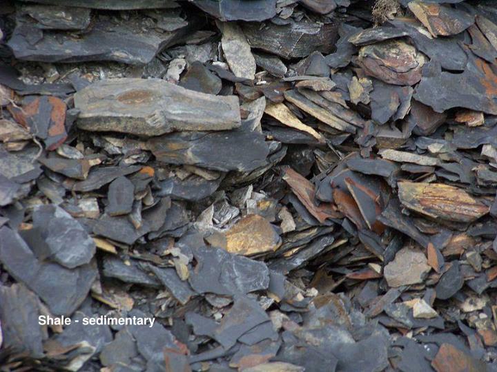 Shale - sedimentary