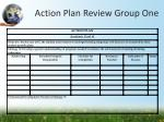 action plan review group one