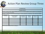 action plan review group three