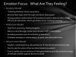 emotion focus what are they feeling