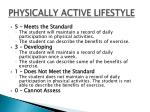 physically active lifestyle1