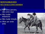 responsabilidades do cavalo com o homem