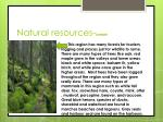 natural resources lumber