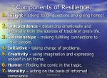 7 components of resilience