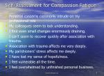 self assessment for compassion fatigue