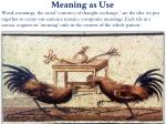 meaning as use