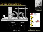 animals learn predictions1