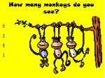 how many monkeys do you see