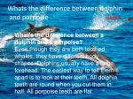 whats the difference between dolphin and porpoise page8
