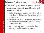 external environment1