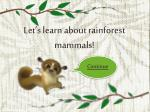 let s l earn a bout rainforest mammals