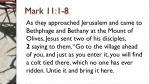 mark 11 1 8