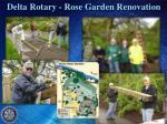 delta rotary rose garden renovation