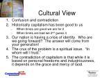 cultural view7