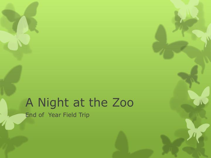 a night at the zoo n.