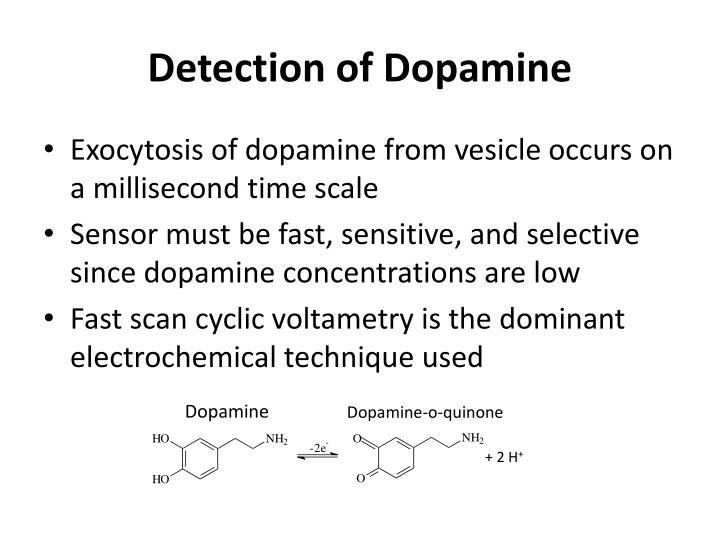 dopamine and dopamine related neurological problems Dopamine is responsible for transmitting signals between the nerve cells or neurons of the brain dopamine is activated when something good chlorpromazine—chlorpromazine blocks dopamine and norepinephrine  genetics of schizophrenia  affected parents exhibit delayed neurological.