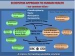 ecosystem approach to human health our common vision