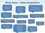 many voices many perspectives