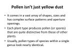 pollen isn t just yellow dust