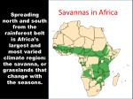 savannas in africa
