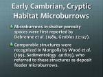 early cambrian cryptic habitat microburrows