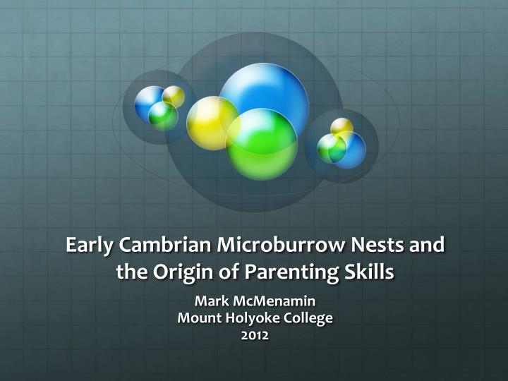 early cambrian microburrow nests and the origin of parenting skills n.