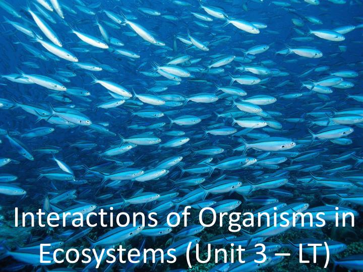 interactions of organisms in ecosystems unit 3 lt n.