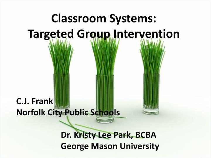 classroom systems targeted group intervention n.