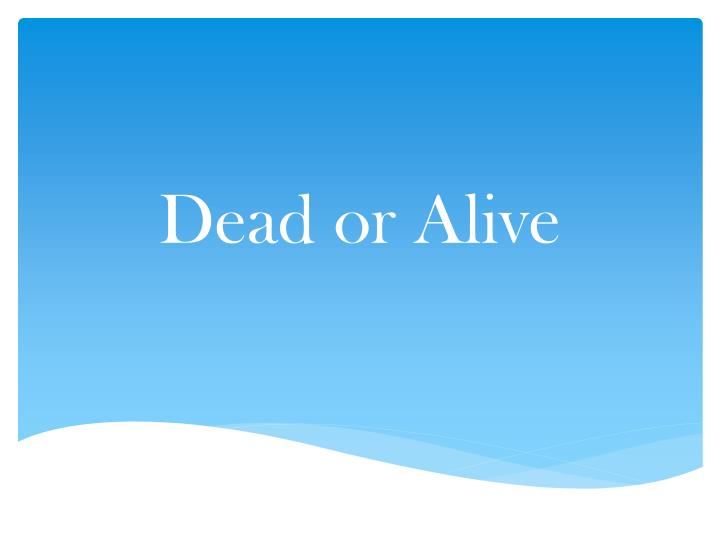 dead or alive n.