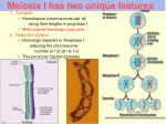 meiosis i has two unique features