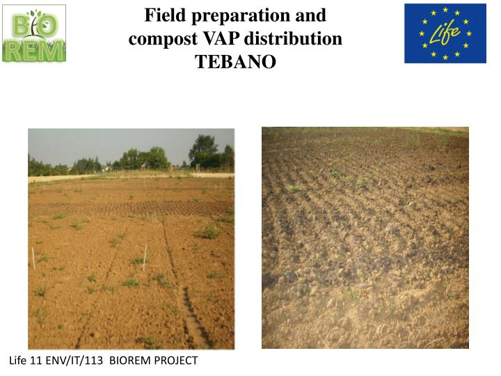 Field preparation and