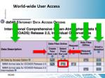 world wide user access