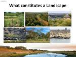 what constitutes a landscape