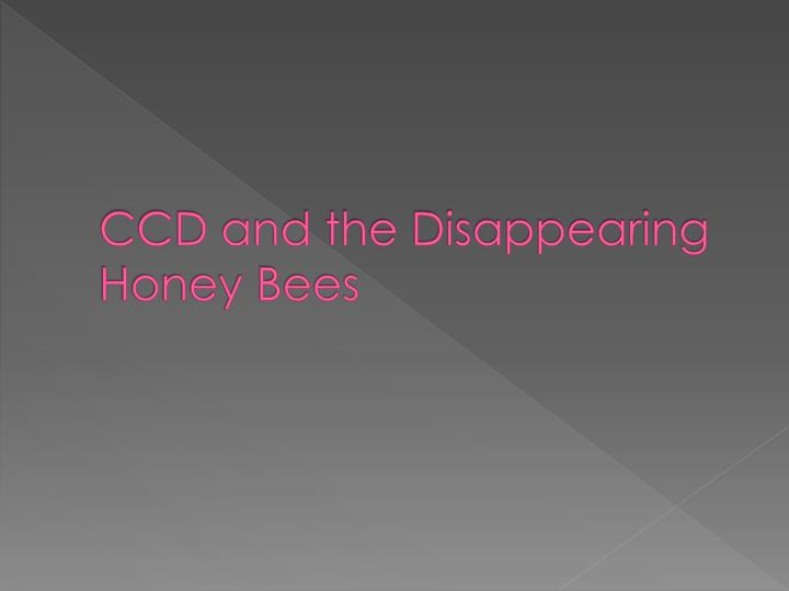 ccd and the disappearing honey bees n.