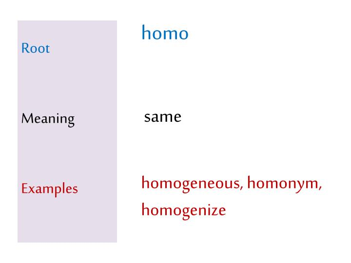 root meaning examples n.