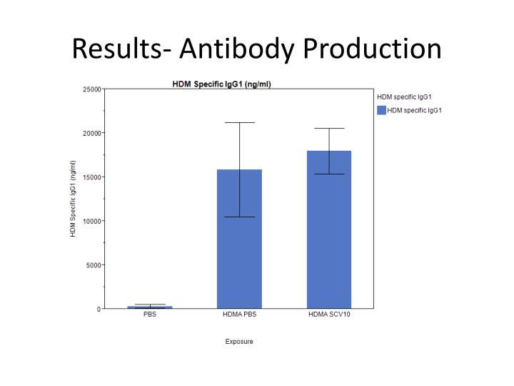 Results- Antibody Production